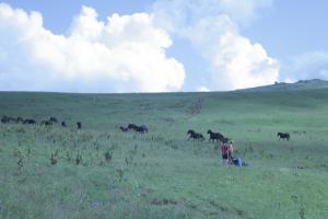 Горный поход по плато Лагонаки 2013
